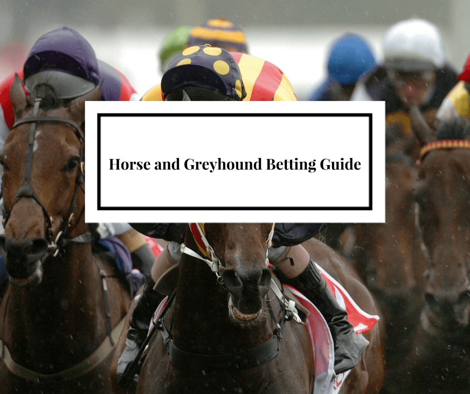 Horse and Greyhound Betting Guide